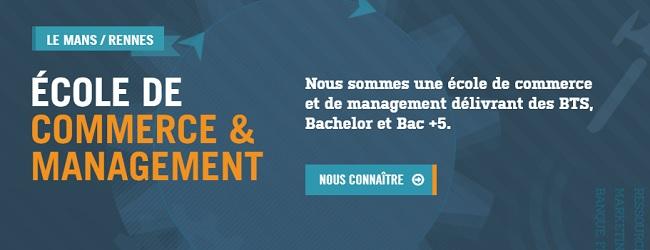 école de commerce Rennes